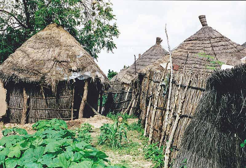 ilkel kabile dinleri