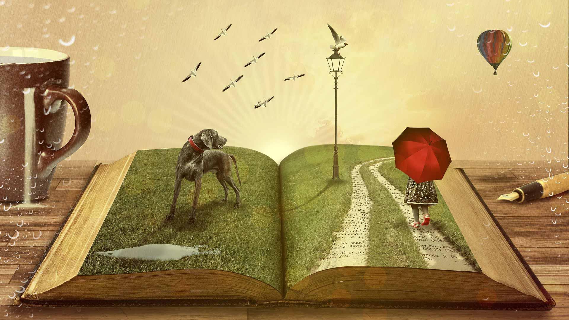 kitap çevre